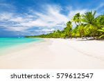 Coconut Palm trees on white sandy beach in Caribbean sea, Saona island. Dominican Republic