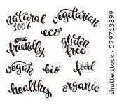 eco friendly conceptual... | Shutterstock .eps vector #579713899