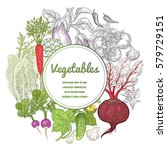 poster with vegetables  root... | Shutterstock .eps vector #579729151