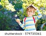 happy little preschool kid boy... | Shutterstock . vector #579735361