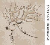 vector illustration  drawing ...   Shutterstock .eps vector #579751771