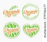 set of organic hand written... | Shutterstock .eps vector #579766177
