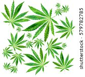 crowd of cannabis leaves on... | Shutterstock . vector #579782785