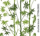 green bamboo seamless pattern...   Shutterstock .eps vector #579863881