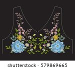 embroidery simplified ethnic... | Shutterstock .eps vector #579869665