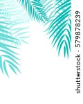 beautifil palm tree leaf ... | Shutterstock .eps vector #579878239