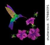 embroidery crewel hummingbird... | Shutterstock .eps vector #579880591