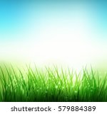natural green grass spring... | Shutterstock .eps vector #579884389