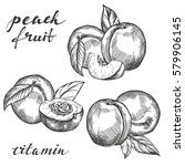 fruit peach set hand drawn... | Shutterstock .eps vector #579906145