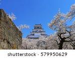 aizuwakamatsu castle and cherry ... | Shutterstock . vector #579950629
