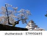 aizuwakamatsu castle and cherry ... | Shutterstock . vector #579950695