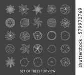 set of trees. top view | Shutterstock .eps vector #579972769