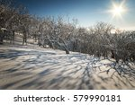 winter forest against the blue... | Shutterstock . vector #579990181