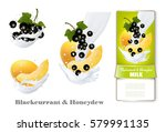 blackcurrant and honeydew melon ... | Shutterstock .eps vector #579991135