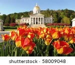 Tulips At The Vermont State...
