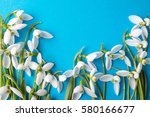 fresh snowdrops on blue... | Shutterstock . vector #580166677
