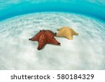 a pair of colorful west indian... | Shutterstock . vector #580184329