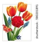 spring flower  tulips  muscari  ... | Shutterstock .eps vector #580201891