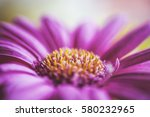 macro close up photography of a ... | Shutterstock . vector #580232965