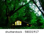 hut in the jungle - stock photo