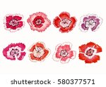 carnation flowers and leaves ... | Shutterstock . vector #580377571