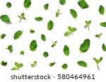 mint leaves on white background  | Shutterstock . vector #580464961