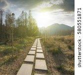 sunset in the woods corridor   Shutterstock . vector #580551871