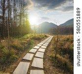 sunset in the woods corridor | Shutterstock . vector #580551889