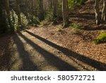 the morning light shining... | Shutterstock . vector #580572721