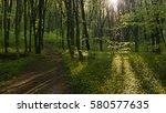 peaceful path going through... | Shutterstock . vector #580577635