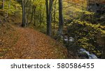 forest path winding along the... | Shutterstock . vector #580586455