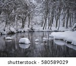 trees covered with snow... | Shutterstock . vector #580589029