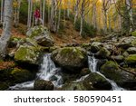 Small photo of Young woman hiker standing on a big rock in the forest by a stream admiring the peace and beauty of autumn.