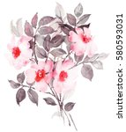 botanical watercolor painting... | Shutterstock . vector #580593031
