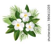 tropical exotic plumeria... | Shutterstock .eps vector #580611205