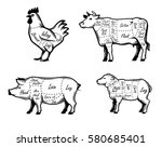 butchers guide symbols vector... | Shutterstock .eps vector #580685401
