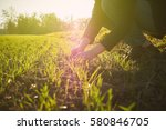 Young Agriculture Woman...