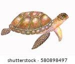 sea turtle illustration with... | Shutterstock . vector #580898497