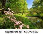 Spring Landscape With Pond And...