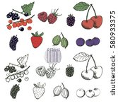 berries collection. hand drawn... | Shutterstock .eps vector #580933375