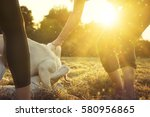 young dogs play together and a... | Shutterstock . vector #580956865