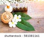 spa massage compress balls ... | Shutterstock . vector #581081161