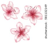 Set Of Vector Pink Flowers...