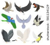 set of different wing wild... | Shutterstock .eps vector #581134129