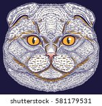 scottish fold cat portrait hand ... | Shutterstock .eps vector #581179531