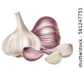 garlic on white background | Shutterstock . vector #581247751
