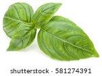 close up studio shot of fresh...   Shutterstock . vector #581274391