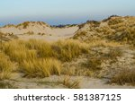 Sand Dunes With Grass In Bray...