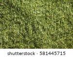 artificial turf. | Shutterstock . vector #581445715