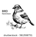 bird hand drawn | Shutterstock .eps vector #581508751
